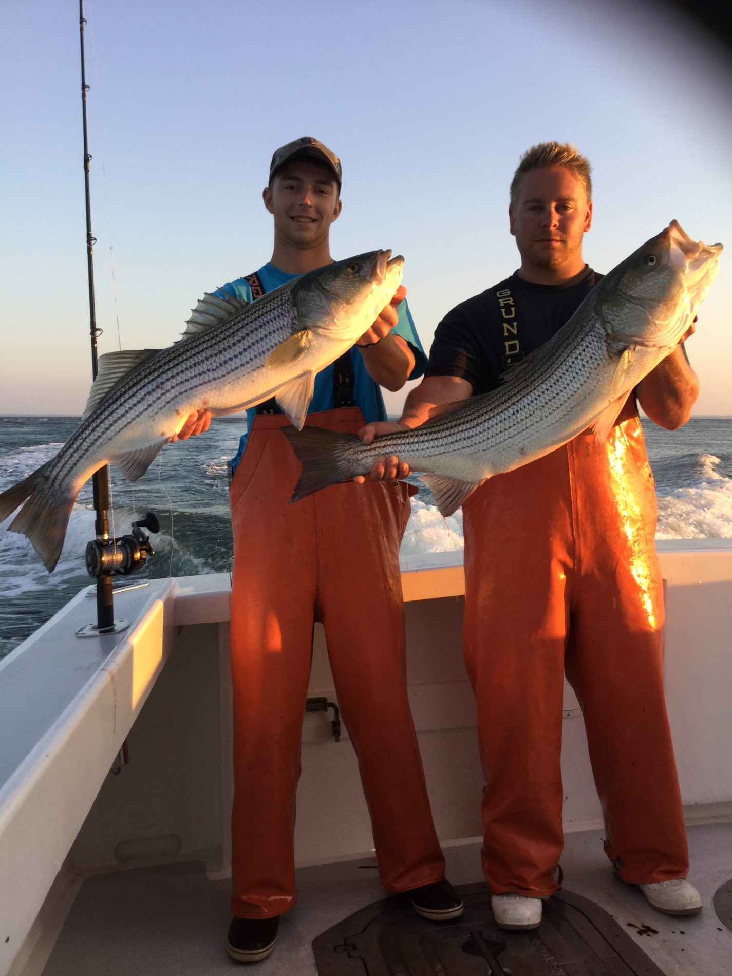 Striped bass and bluefish long island charters longevity for Long island fishing charters